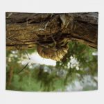 Cicada shell. It was in a hurry. Tapestry on Teepublic by someartworker